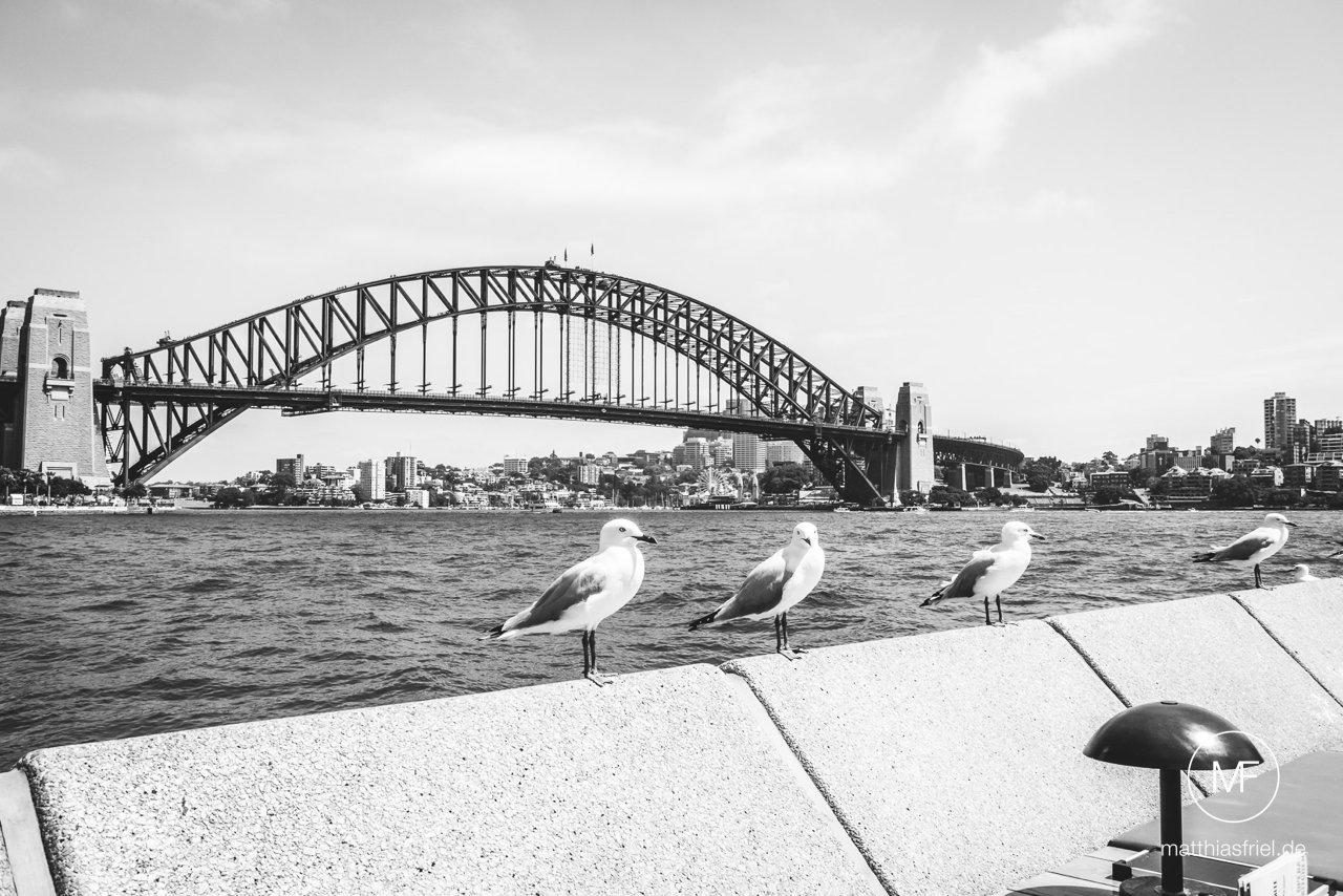australia-sydney-travel-photography-matthias-friel_0053