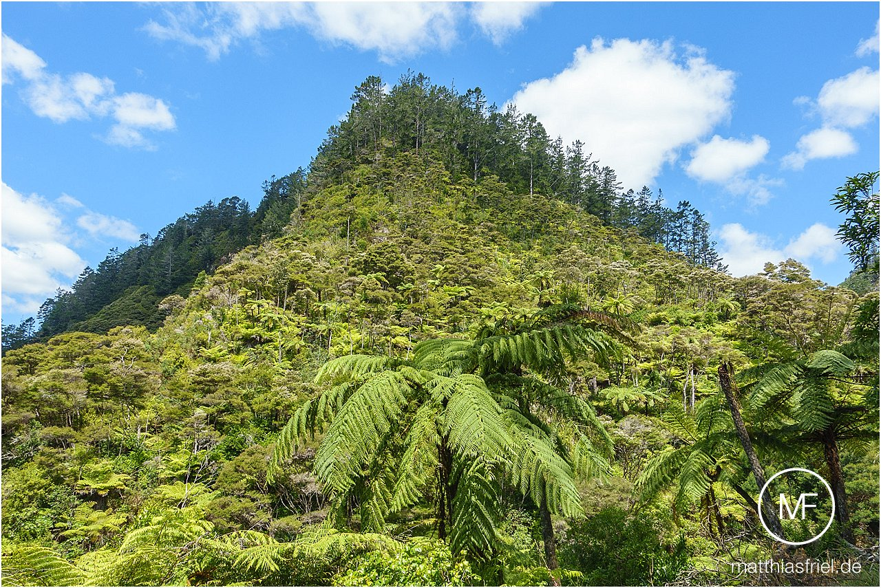 travel-new-zealand-matthias-friel_0050