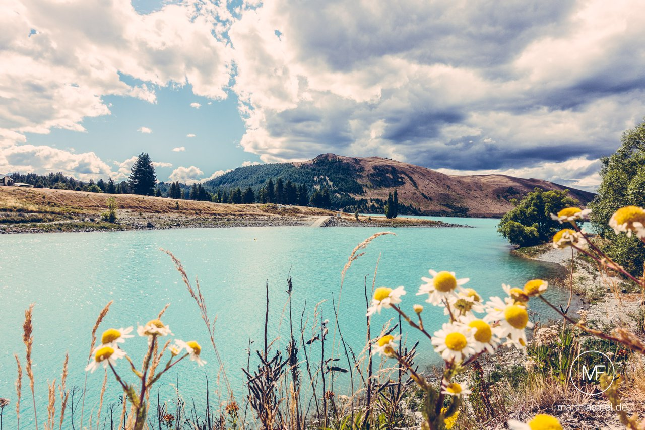 new-zealand-south-island-travel-photography-matthias-friel_0120