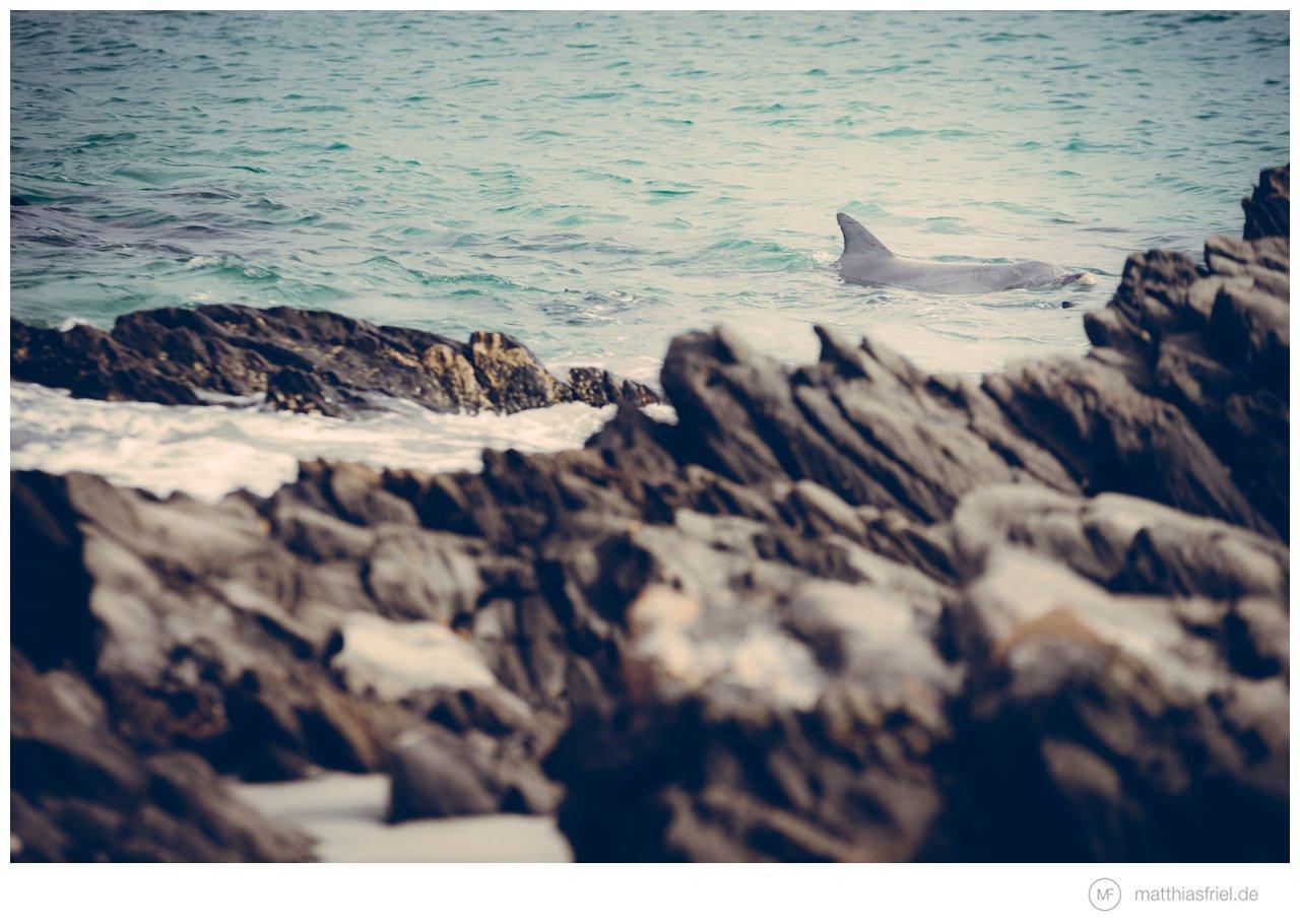 kangaroo-island-australia_0008