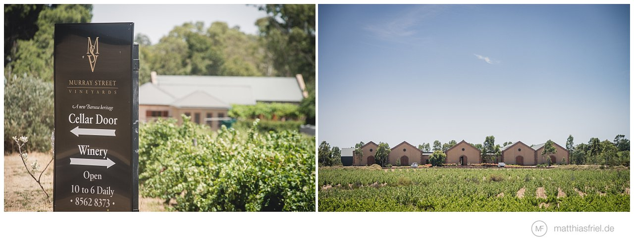 wedding-barossa-valley-Murray Street-Vineyards-australia-matthias-friel_0038